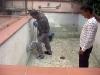 Igår morse började de slipa väggarna på poolen.