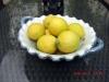 De fina citronerna lade jag upp i en skål ute.