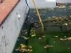 Så här långt tömdes poolen automatiskt, sen fick vi ta hjälp av en pump.