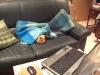 Frasse ligger i soffan under filten och gosar...