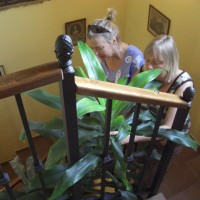 Den fula dracenan i trappan är snart ett minne blott...