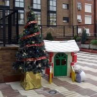 Julgran finns på gården