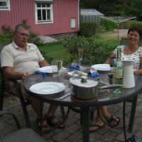 Svensk lunch, matjessilloch färskpotatis med tillbehör